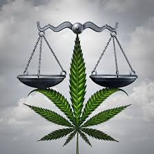 Article: 4 Things Hemp Lawyers Want You to Know Before You Sell CBD Products