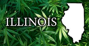 Update on Illinois Marijuana Adult Use