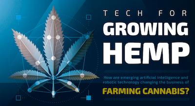 Infographic: AI & Robotics Enhance Cannabis Farming