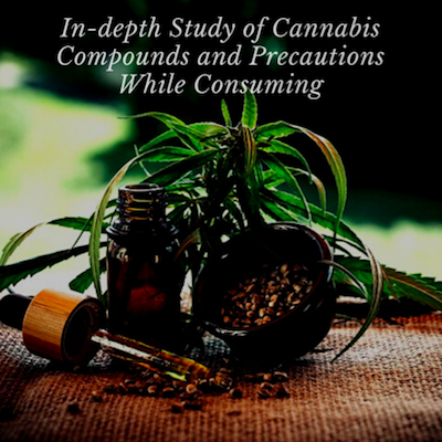 In-depth Study of Cannabis Compounds and Precautions While Consuming