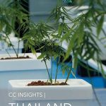 Thailand Medical Cannabis Report Published