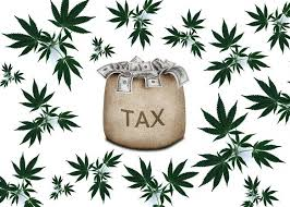 Article: Three Ways Cannabis Businesses Can Save Money This Tax Season