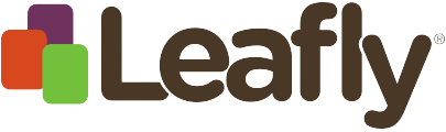 """Leafly Has Laid Off 54 Employees, 18% Of Total Workforce Even CEO Calls It """"Elimination"""""""