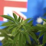 Australia TGA Stats Say More Patients Are Getting Access To Medical Cannabis
