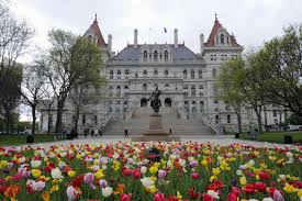 NY State Legislature Still Not There On Cuomo's Cannabis Plan Says Media Report