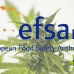 European Food Safety Authority Reports Says Eating Hemp Foods May Elevate Ingested THC Levels