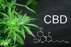 Brief info on CBD, hemp & cannabis and health benefits of CBD