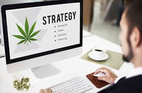 Effective Tips To Win The Marijuana Marketing Game