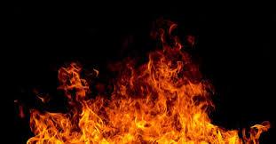 Lawsuit: They Set $1.4 Million Of My Hemp On Fire