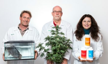 Cannabis company executives point finger at founders over alleged missing $14 million