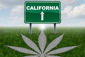 California Marijuana Notebook: Tax issues loom high on the agenda for state's cannabis industry says MJ Biz