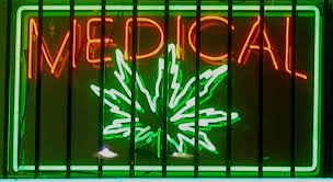 The Netherlands introduces new medical cannabis varieties for patients