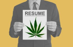 Cannabis Resume: Cover Letters and Keywords Part 3