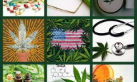 How To Make a Cannabis Quilt