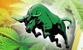 The Cannabis Stock Rebound. Last Week Aurora Was Up 41%. Tilray 150%