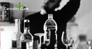 CBD as a Cure for Alcohol Abuse