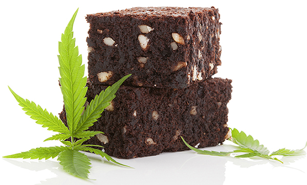 Elusive Edibles For Florida: Beginnings