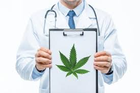 "Canadian Scientists Says Expediate Medical Cannabis Research To See If Cannabis Has ""Immunomodulatory Properties"""