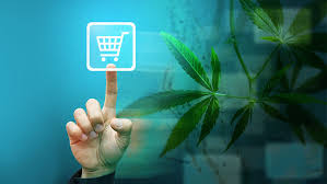 Strains Of Weed For Sale, You Should Buy Marijuana Online