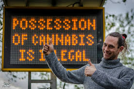 UK To Hold  Virtual Cannabis Legalisation Rally  on 4/20 in 2020