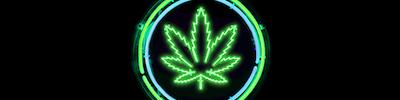 Deloittes Cannabis – Brave New Market Webinar Series