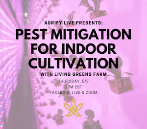 Pest mitigation for indoor cultivation