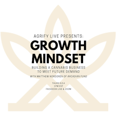 Adopting a growth mindset when navigating the cannabis industry