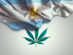 Argentina: The Arriola Decision & The Decriminalization of Cannabis