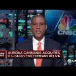 Aurora Enters US Hemp Market Via Acquisition – Stock Price Shoots Up 30%