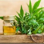 CBD Oil: What You Have To Pay Attention To