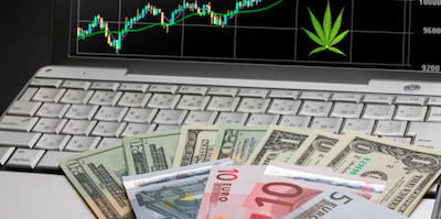 Investing in Cannabis during a Crisis