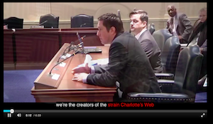 AAXLL Responds to Trademark Lawsuit Regarding Charlotte's Web Strain