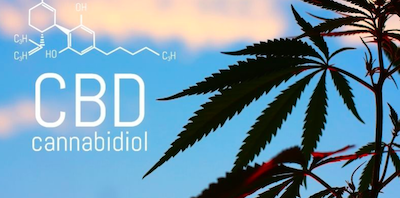 CBD, Amazon Distribution Channel and Trademarks