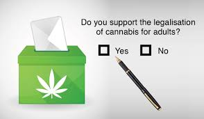 New Zealand: New Survey Shows Increased Support For Cannabis Regulation & Especially Amongst Women.. Even 1/3rd Of National Voters Say They Will Vote In The Affirmative !