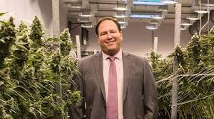 Not A Good Sign: Former president and co-founder of Cresco Labs resigns from Chicago cannabis firm's board