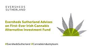 Eversheds advises on medical cannabis private equity fund established in Ireland