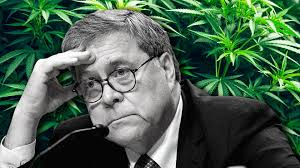 William Barr Has Directed Improper Antitrust Investigations Into Cannabis Companies Says Justice Dept Official Whistleblower