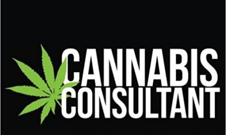 Cannabis Consulting and Coaching Insight