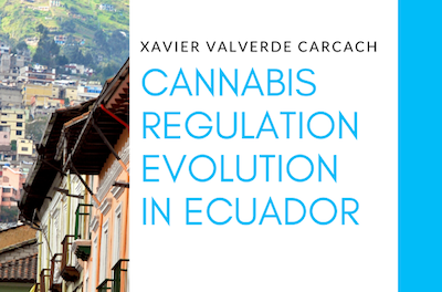 Cannabis Regulation Evolution in Ecuador