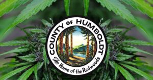 Humboldt County DA Re-Designates 801 Cannabis Convictions To Misdemeanor