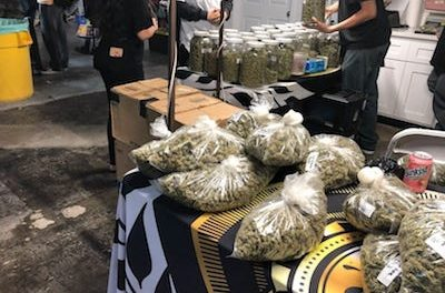California authorities raid illegal cannabis 'farmers market'