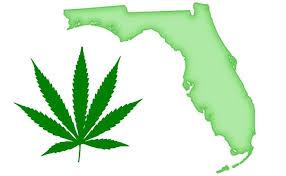 Medical Marijuana Program in Florida.