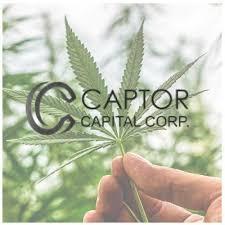 California marijuana exec sues MedMen affiliate Captor Capital for fraud, more