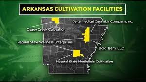 Arkansas: Medical Cannabis Producers Sue To Stop Others Coming Into State Market