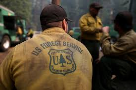 Great Move..US Forest Service Hires HAZMAT Consultant for Cannabis Eradication Training