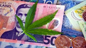 "Kool Aid Drinking Starts In NZ ! ""Cannabis referendum: CBD oil companies set up in NZ as potential gold rush looms"""