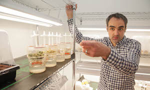 Former Canopy Growth Geneticist Turns to Psychedelics Research