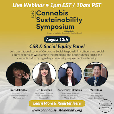 Corporate Social Responsibility and Social Equity Webinar With Leading Industry Experts