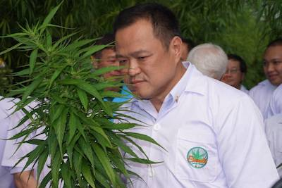 Thailand: Ministry of Public Health, Cabinet To Amend Legislation To Allow Public To Grow Own Medical Cannabis