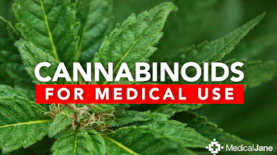 The Usage of Cannabis and Cannabinoids for Medical Purposes
